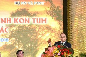 Thủ tướng Nguyễn Xuân Phúc:Cần bảo hộ thương hiệu sâm Ngọc Linh trên thị trường quốc tế