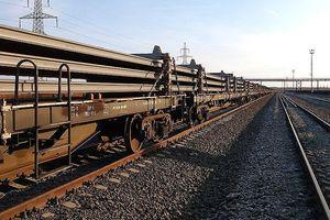 Tập đoàn đường sắt Nga chuẩn bị nghiên cứu làm metro hạng nhẹ ở Việt Nam