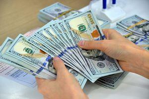 Tỷ giá ngoại tệ 7/9: USD chững lại sau nhiều phiên tăng điểm