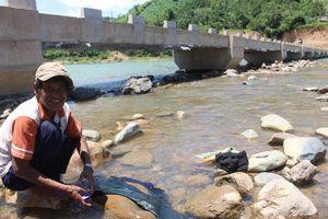 Cây cầu người dân xã nghèo 'quý hơn cho vàng bạc' ở Quảng Trị