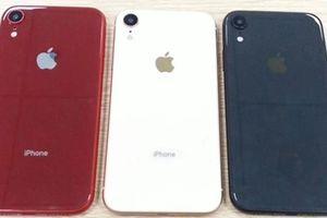 Lộ diện iPhone 9 với màu sắc rực rỡ