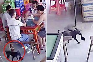 Clip: Mất ví trong lúc chơi bài, kiểm tra camera phát hiện thủ phạm không ngờ
