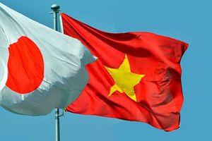 Tăng cường giao lưu nhân dân Việt Nam - Nhật Bản