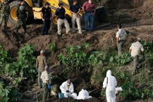 Mexico: Phát hiện mộ tập thể 166 thi thể