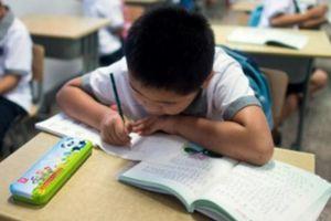 Trung Quốc: Cô giáo gây bão với bài tập đếm 100 triệu hạt gạo