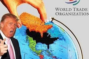 Tổng thống Trump dọa rút Mỹ khỏi WTO: Trò chơi nguy hiểm!