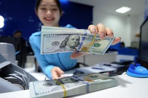 Tỷ giá ngoại tệ ngày 8/9: USD lên đỉnh, EUR lao dốc