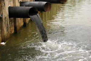 Xả thải gây ô nhiễm, một nhà máy giặt bị 'đóng cửa' 12 tháng