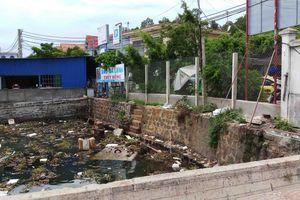Phạt Công ty TNHH Thủy sản Hải Tinh 133 triệu đồng do vi phạm môi trường