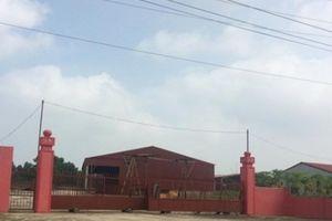 Phú Thọ: Dự án nhà máy xi măng hàng trăm tỷ 15 năm bỏ hoang