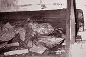 Lăng mộ Từ Hy thái hậu đã bị 'Tôn Ma tử' đào trộm như thế nào?