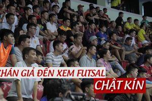 Khán giả futsal đông đảo sau khi Thái Sơn Nam xếp nhì châu Á