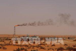 Dầu mỏ: Nội dung chính của hội đàm giữa Mỹ với Nga và Saudi Arabia
