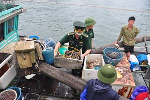 Quảng Ninh bắt 5 tàu cá khai thác tận diệt thủy sản