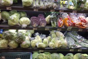 Nhiều tín hiệu tích cực trong xuất khẩu rau quả
