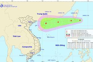 Khẩn trương ứng phó với áp thấp nhiệt đới gần biển Đông
