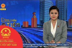 BẢN TIN DÒNG CHẢY CỦA TIỀN CHIỀU NGÀY 10/09/2018