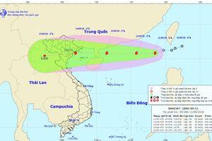Bão số 5 di chuyển nhanh, khả năng ảnh hưởng các tỉnh từ Quảng Ninh đến Thanh Hóa