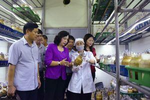 Kiểm tra Chương trình 02-CTr/TU tại huyện Sóc Sơn: Huy động nguồn lực xã hội hóa để xây dựng nông thôn mới
