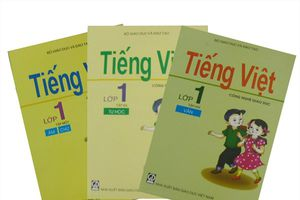 Vì sao 'Tiếng Việt 1- Công nghệ giáo dục' của GS Hồ Ngọc Đại chưa thể trở thành sách giáo khoa?