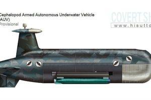 'Sát thủ không người lái' Nga: Nỗi khiếp đảm với tàu ngầm và tàu sân bay Mỹ