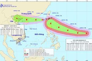 Chủ tịch UBND tỉnh ra công điện chỉ đạo ứng phó bão số 5 và siêu bão Mangkhut