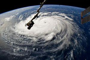 1 triệu người được lệnh sơ tán tránh bão tại bang Nam Carolina, Mỹ