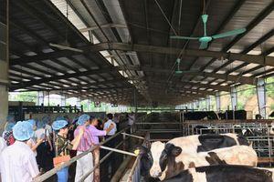 Nhân rộng điển hình nông dân sản xuất, kinh doanh giỏi