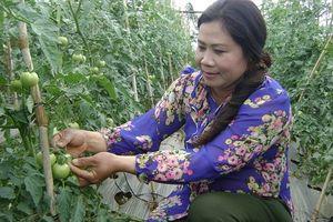 Tăng vốn vay cho nông dân lên 200 triệu đồng