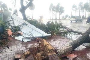 Biển Đông đối mặt với 'cơn bão khủng' Mangkhut