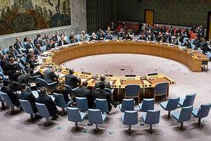 Đề nghị HĐBA LHQ họp về tình hình Syria