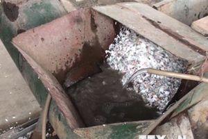 Quảng Ninh: Phát hiện cơ sở tái chế nhựa xả thải ra môi trường