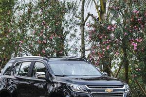 Chevrolet Trailblazer - Ẩn số hay 'bom xịt' mới tại phân khúc SUV 7 chỗ?