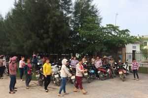 Thái Bình: Công ty Vina Kangaroo ngừng hoạt động, tài sản con nợ bị xâu xé phũ phàng