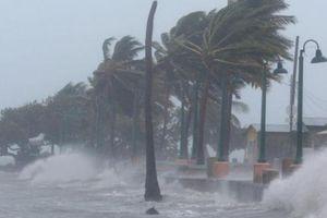 Vì sao bão và áp thấp nhiệt đới vào đất liền thường bị suy yếu?