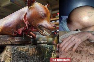 Ăn thịt chó: Sướng mồm khổ thân vì ăn phải thịt chó dại, chó đánh bả