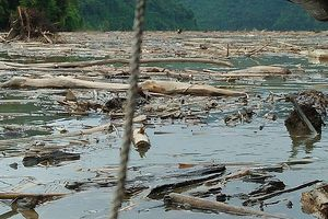 Nghệ An: Sau mưa lũ, rác ngập lòng hồ Bản Vẽ