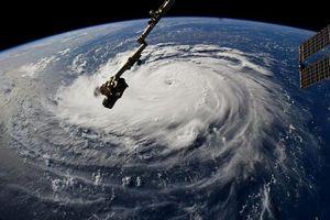 Siêu bão Florence sắp đổ bộ, dân Mỹ gấp rút sơ tán
