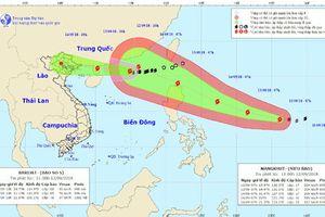 Hà Nội triển khai phương án ứng phó bão số 5