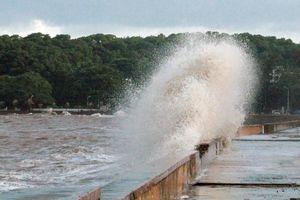 Hải Phòng phát công điện khẩn phòng chống bão số 5