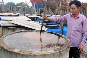 Làng nghề nước mắm Tân An nói không với hóa chất bảo quản