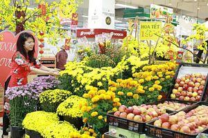 Ngắm 'rừng' hoa Tết rực rỡ trong siêu thị