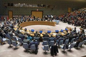 Tranh cãi nảy lửa tại Liên Hợp Quốc về lệnh ngừng bắn ở Syria