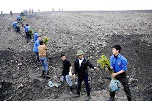 Quảng Ninh: Thực hiện nhiệm vụ trọng tâm bảo vệ môi trường năm 2018