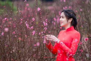 Hot girl Đại học Kiểm sát Hà Nội khoe sắc thắm bên hoa đào ngày Xuân