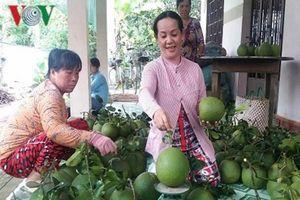 Hai loại trái cây đặc sản của Bến Tre được chứng nhận chỉ dẫn địa lý