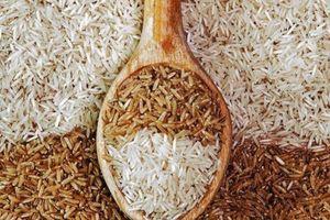 Cần hiểu đúng về chất lượng dinh dưỡng, cách sử dụng của gạo trắng và gạo lứt