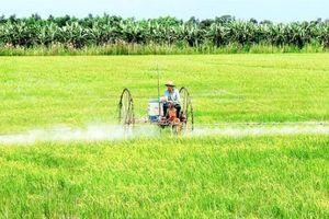 Xu thế phát triển nông nghiệp hữu cơ ở Ninh Thuận