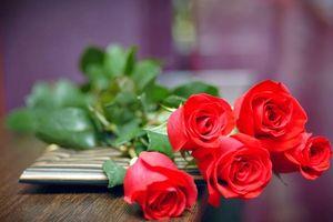 Tặng hoa gì cho một nửa yêu thương trong ngày 8-3?