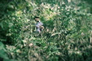 Nghi phạm sát hại hai cha con ở Lạng Sơn treo cổ tự tử trong khe núi